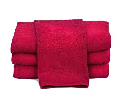 Towels by Doctor Joe D-15253-RI  Dark Red 15″ x 25″ China Soaker, Pack of 12 Review